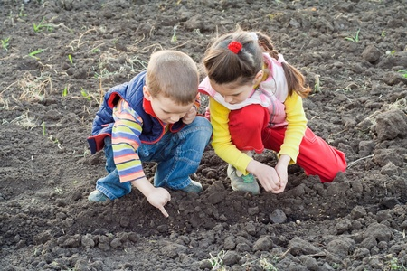Two little children planting seeds on the field, outdoors Stock Photo