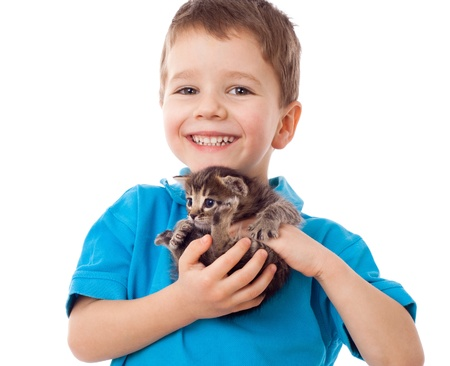elementary age boys: Smiling little boy with kitty in hands, isolated on white