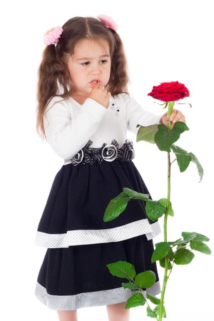 hesitation: Pensive little girl with red rose, isolated on white