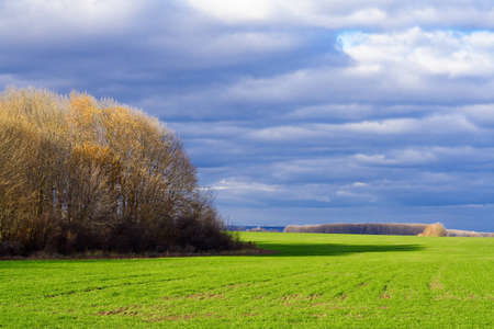 Autumn landscape with green meadow and cloudy sky photo