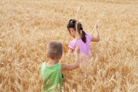 Two kids walking on a wheat field photo