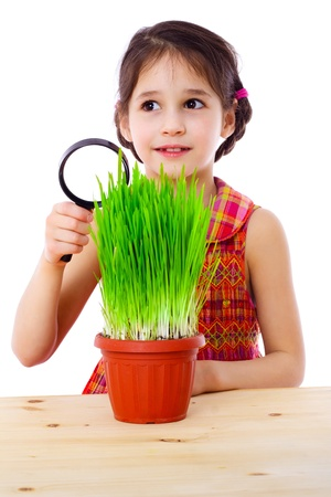 Surprised girl with magnifying glass and green grass on the table , isolated on white photo