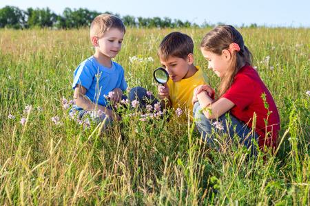 Drie kinderen op zoek naar bloem door een vergrootglas, outdoor