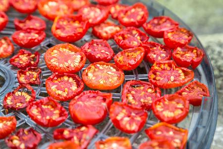 sundried: sundried red cherry tomatoes on dehydrator tray Stock Photo
