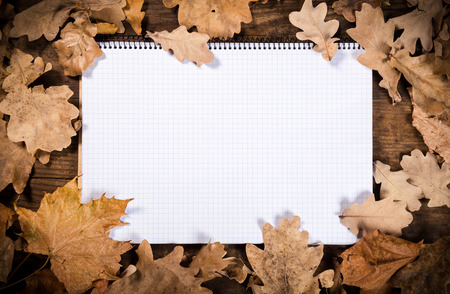 Autumn wooden natural background with withered leaves and blank opened notebook photo