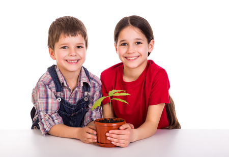 saplings: Smiling children caring for potted plant, isolated on white
