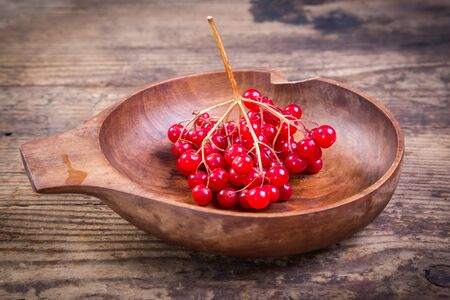 guelder: bunch of viburnum in wooden plate on wooden background