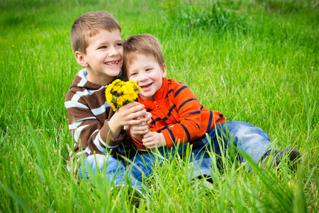 hermanos jugando: Dos muchachos con ramo de dientes de león sentado en la pradera verde Foto de archivo