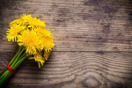 Bunch of dandelions on brown wood texture with empty space for text photo