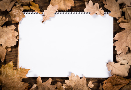 notebook page: Autumn wooden natural background with withered leaves and blank opened page of notebook