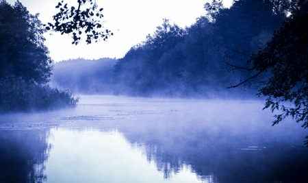 forest river: Morning fog on a calm river, tranquil scene on Seversky Donets river, Ukraine, cold color toned image