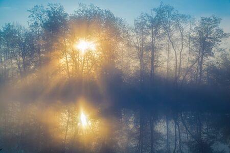 lowland: Morning fog on a lowland river in forest, tranquil scene. Vorskla river, Ukraine