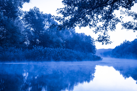 tranquil: Morning fog on a calm river, tranquil scene on Severskiy Donets river, Ukraine, natural background with cold color toned image