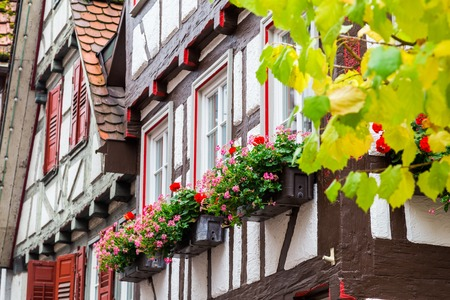 old town house: Wall of old house with potted geranium on windows, historic old German town Calw, autumn city landscape with flowers