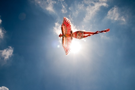 Flying the Firebird on the background of blue sky with clouds