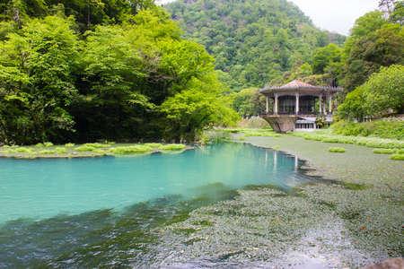 arbor: Arbor on the lake with azure water, Abhazia.