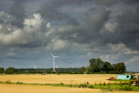 Wind turbine in a golden wheat field with dramatic clauds.
