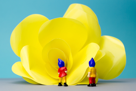 dwarves: Miniature dwarves with giant flower on blue background