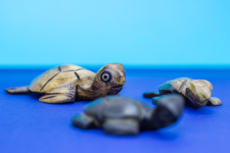 figurines: Wooden turtle figurines on blue background
