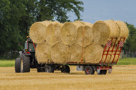 Transport bales of hay