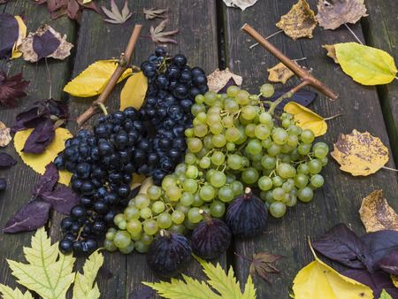 Autumn fruits: grapes and figs on a wooden table and autumn leaves photo