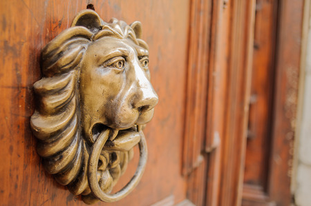 Knocker lion