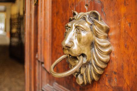 knocker: Knocker lion