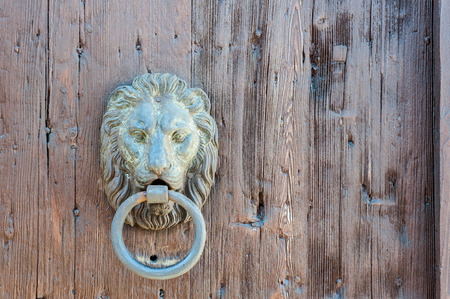 Doors with door knocker in the shape of lion head
