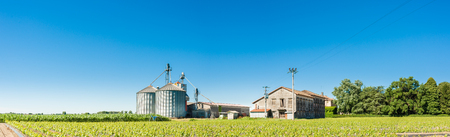 monoculture: Agricultural landscape with old farm and silos Stock Photo