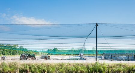 fish farm: fish farm with safety nets from birds