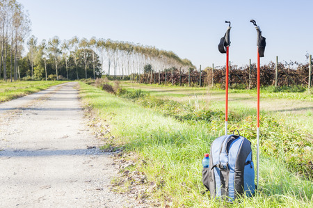 nordic country: Backpack and sticks to do nordic walking on country roads.