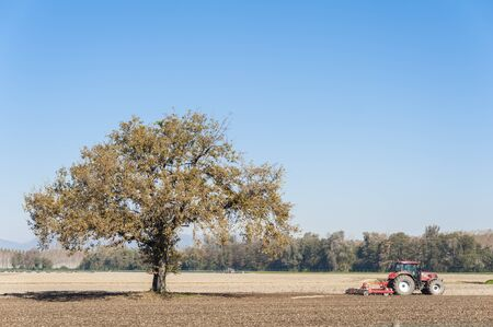 harrow: Agricultural landscape with a tree and tractor plowing the field with harrow.