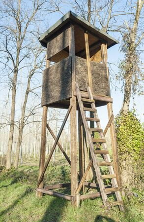 hunter's cabin: Raised shed hunting for deer in the middle of a forest of poplars.