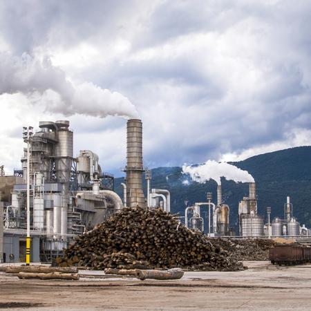 smokestacks: Chemical plant of lumber factory.Chimney,silos,trunks,wagon rail and smoke.