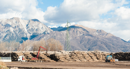 Storage of logs for the wood industry.   A crane loads trucks for transporting logs, in the background the mountains.