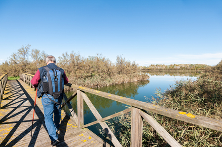 Hiker (60 years old) on a wooden footbridge on the river. Rear view. Stock Photo