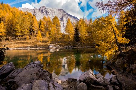 Colorful autumn landscape mountain. Mountains, lake and colrful trees. Italy, Friuli, Lake of Bordaglia. Zdjęcie Seryjne