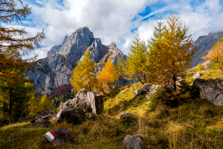 Colorful autumn scene on mountain. Sky with clouds,colorful trees and mountain peak Zdjęcie Seryjne