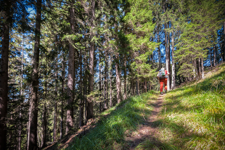 Hiker walking in the mountains. goal, success, freedom and achievement concept. Zdjęcie Seryjne