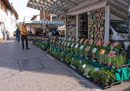 Udine, Italy - April 2 2019 :People at the local traditional outdoor market. Plant stall for the vegetable garden.