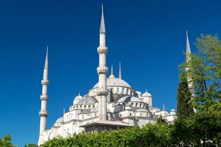 Vista de la Mezquita Azul de Sultanahmet Camii en Estambul, Turquía Foto de archivo - 20906739