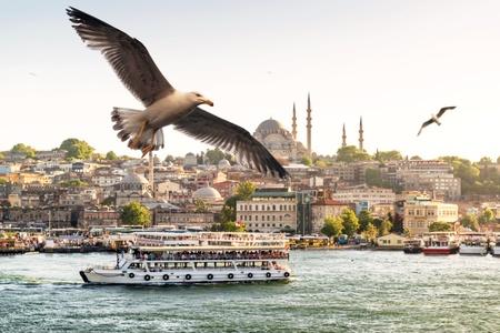 Meeuwen vliegen over de Gouden Hoorn in Istanbul, Turkije