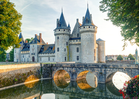 The chateau of Sully-sur-Loire, France  This castle is located in the Loire Valley, dates from the 14th century and is a prime example of medieval fortress  免版税图像 - 26060707