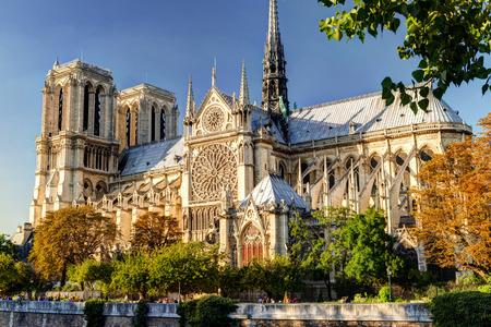 De kathedraal van Notre Dame de Paris, France Stockfoto