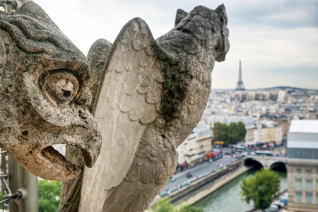 gargoyles: Chimera  gargoyles  of the Cathedral of Notre Dame de Paris overlooking the Eiffel Tower in Paris, France