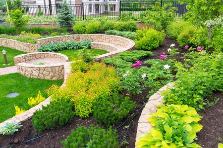 Natural flower landscaping in home garden Standard-Bild