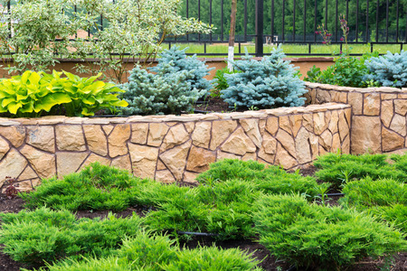 Natural flower landscaping in home garden 免版税图像