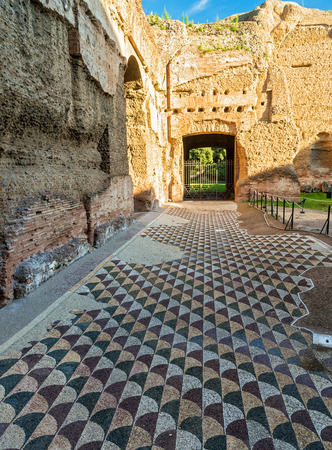 Floor in the Baths of Caracalla in Rome, Italy photo