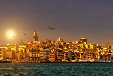 gull: Istanbul skyline with Galata Tower at sunset, Turkey Stock Photo