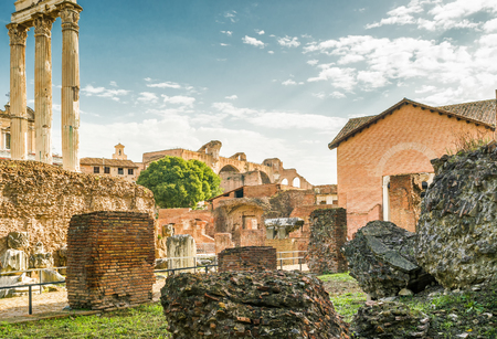 Ruins of the Roman Forum, Rome, Italy